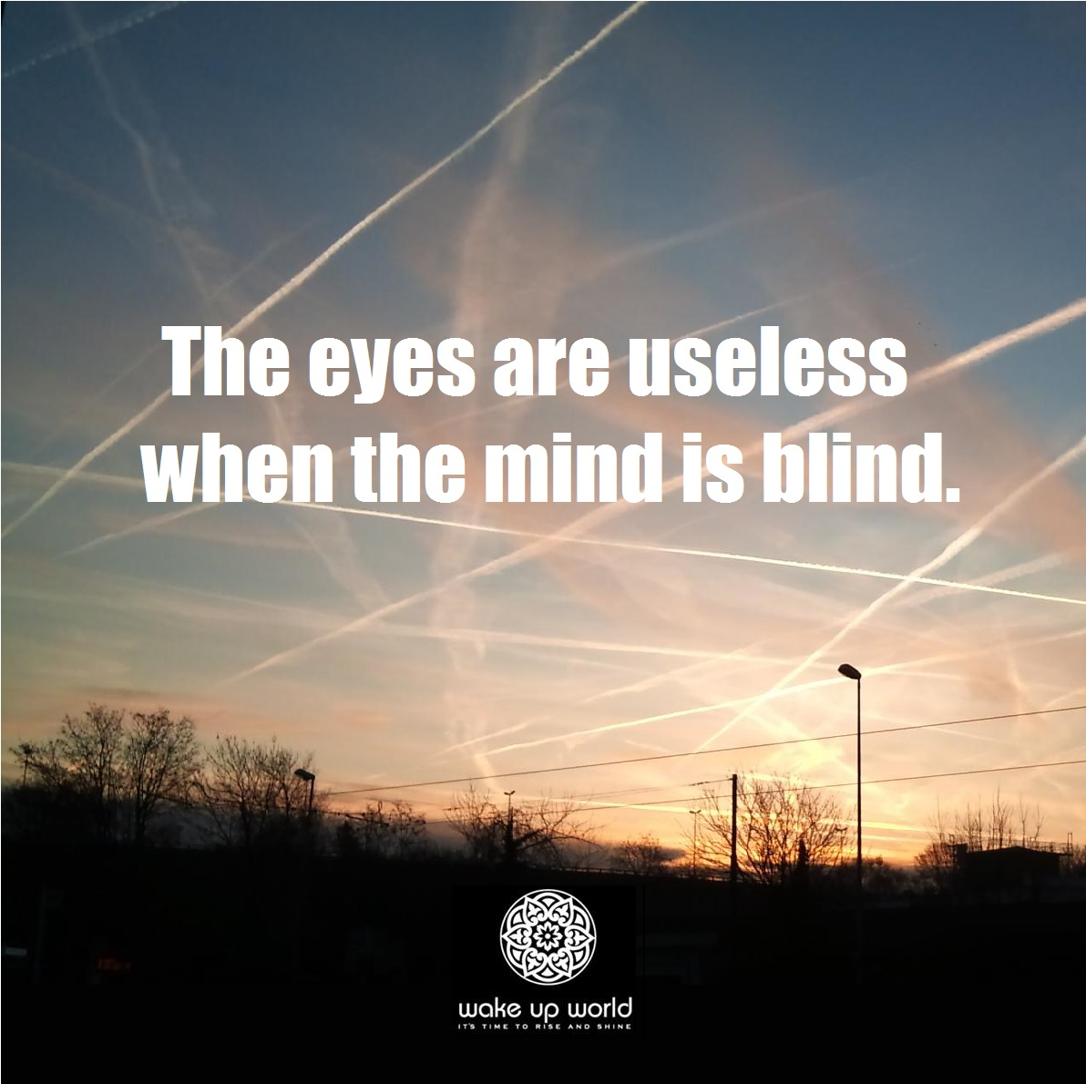 Geoengineering-The-Eyes-Are-Useless-When-The-Mind-Is-Blind-Meme