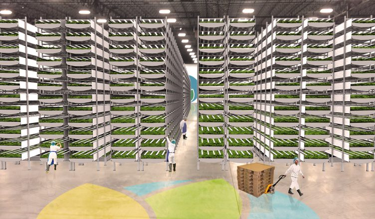 AeroFarms - Inside the world's largest vertical farm, where plants stack 30 feet high