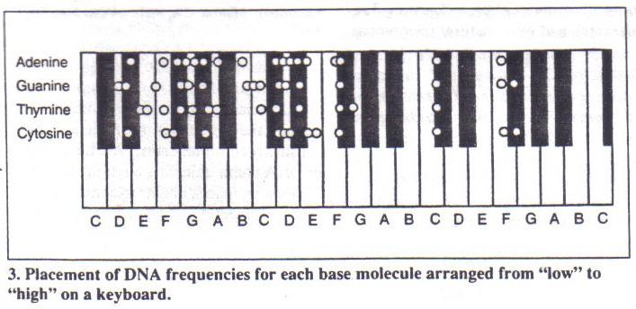 keyboard-keys-DNA-Deamer